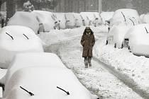 Nejméně 19 lidí zahynulo v souvislosti s mohutnou sněhovou bouří, která ochromila velkou část východního pobřeží USA.