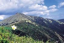 KDYŽ V ČESKU NENÍ Velký Himálaj, musí stačit Krkonoše. Užít si je můžete dokonale.