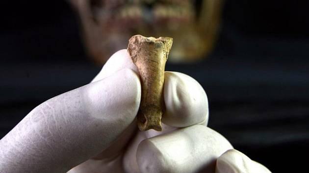 Šperk z orlího drápu. I neandrtálci se chtěli krášlit a měli umělecké cítění