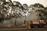 Hasiči bojují s lesním požárem u australského města Burrill Lake na snímku z 5. ledna 2020