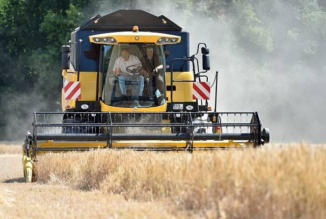 Německé zemědělství zodpovídá za ubývání přírodních druhů, tvrdí NABU