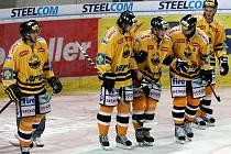 Hokejisté Litvínova.