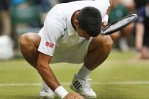 Novak Djokovič snědl po vítězství na Wimbledonu stéblo trávy z kurtu.