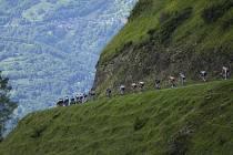 Cyklisté sjíždí z Col de Val Louron-Azet v Pyrenejích na trati 17. etapy Tour de France.