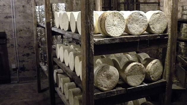 Zrající sýry ve sklepě v Roquefortu, rok 2010