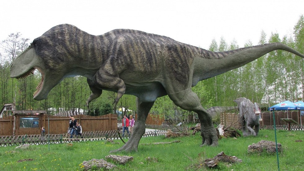 Model Tyrannosaura rexe ve skutečné velikosti.