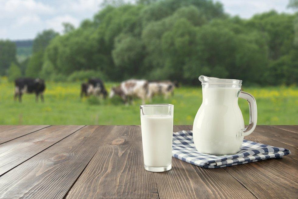 Které potraviny budou povinně české? Například mléko a mléčné výrobky