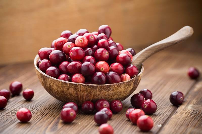 Brusinky patří mezi nejvýznamnější rostlinné antioxidanty.