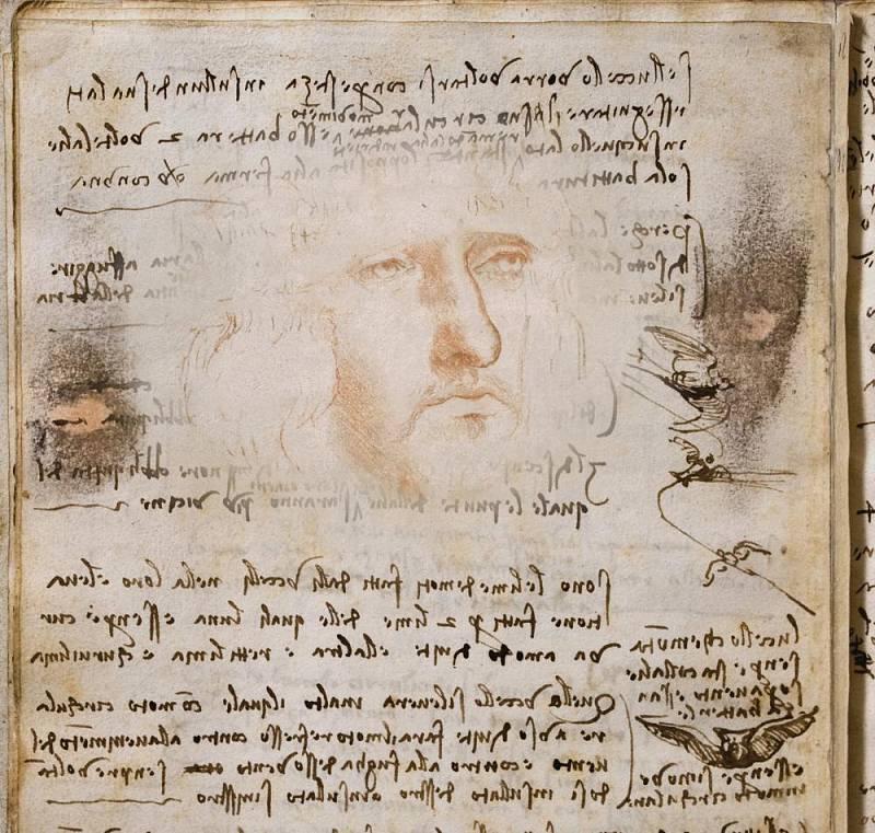 Pravděpodobný da Vinciho autoportrét, zachycující šilhavost