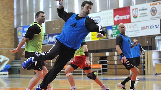 Čeští házenkáři se tvrdě připravovali na mistrovství Evropy, nyní mají šanci dřinu zúročit.