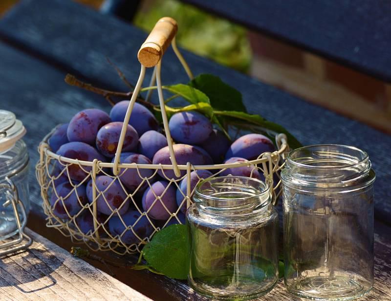 Švestky jsou v našich končinách velmi oblíbeným ovocem.