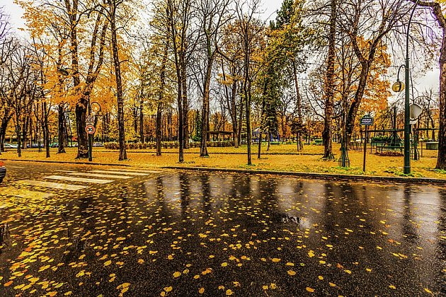 Podzim, ilustrační foto.