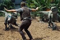 JURSKÝ KOTEL. Chris Pratt jako trochu hulvátský pečovatel Owen, který to ovšem jako málokdo umí se svými domácími mazlíčky: velociraptory.