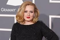 Zpěvačka Adele na starším snímku.