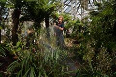 Temperovaný skleník v Kew Gardens