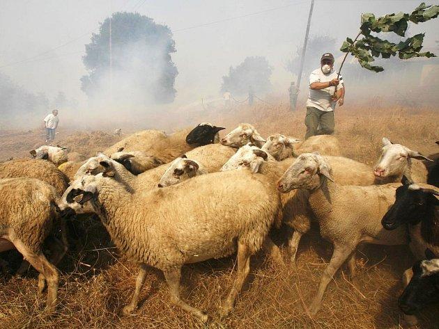 Nejprve ohnivá spoušť, pak mohutné lijáky. Tak si s Řeky sužovanými více než týden ničivými požáry zahrává nevyzpytatelné počasí.