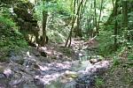 Nádherné malé vodopády leží na Bubovickém potoku vnárodní přírodní rezervaci Karlštejn.