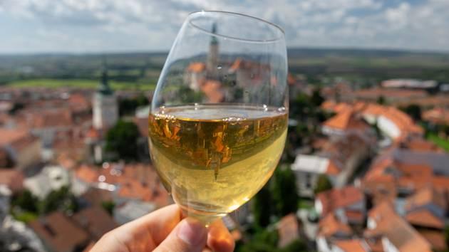 Vinařství roku: čtyři z devíti finalistů jsou z Břeclavska