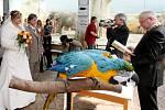 Nechyběl ani Nikita - papoušek ara ararauna