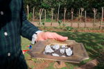 Úlomky meteoritu na Kubě.