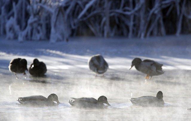 Mrazivá zima v Evropě: Bělorusko
