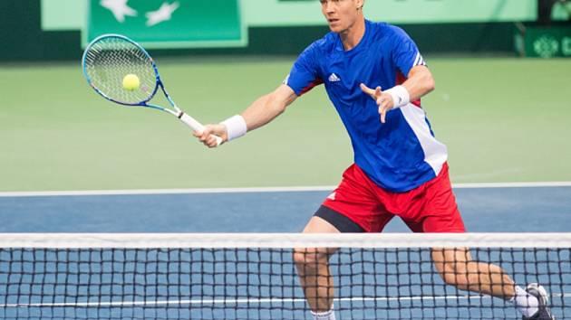 Tomáš Berdych v Davis Cupu.