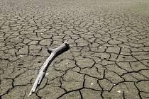 Spojené státy v současnosti trápí nejhorší sucho od roku 1956.