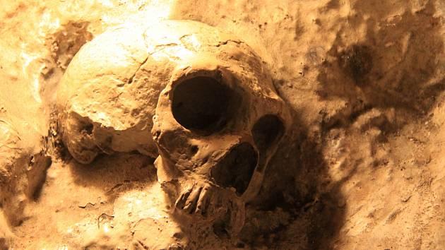 Replika neandertálské lebky staré 40 tisíc let, která byla objevena v jeskyni St. Michael's na Gibraltaru