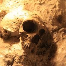 Replika neandrtálské lebky staré 40 tisíc let, která byla objevena v jeskyni St. Michael's Cave na Gibraltaru.