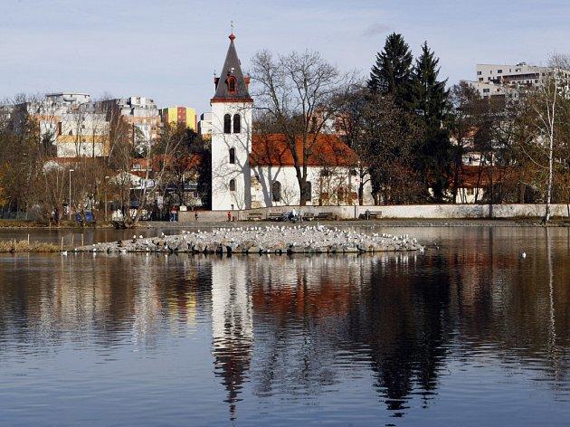 Hamerský rybník.