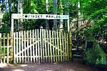 Žofínský prales: Nejstarší přírodní rezervaci nejen u nás, ale v celé pevninské Evropě založil v roce 1838 hrabě Jiří František August Buquoy.