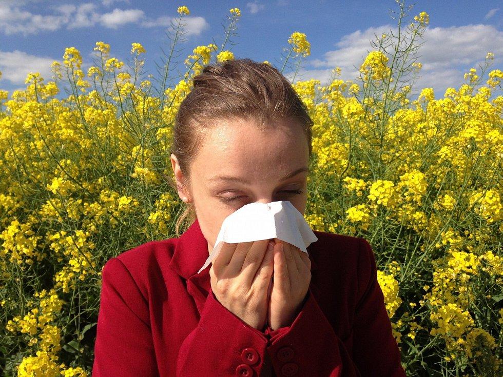 Alergie je přehnaná reakce imunitního systému organismu na látky, se kterými se běžně setkáváme vnašem prostředí.