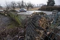 Spadlý strom v obci Velký Třebešov