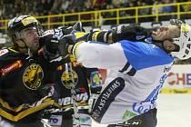 Hokejisté Plzně (v bílém) proti Litvínovu.