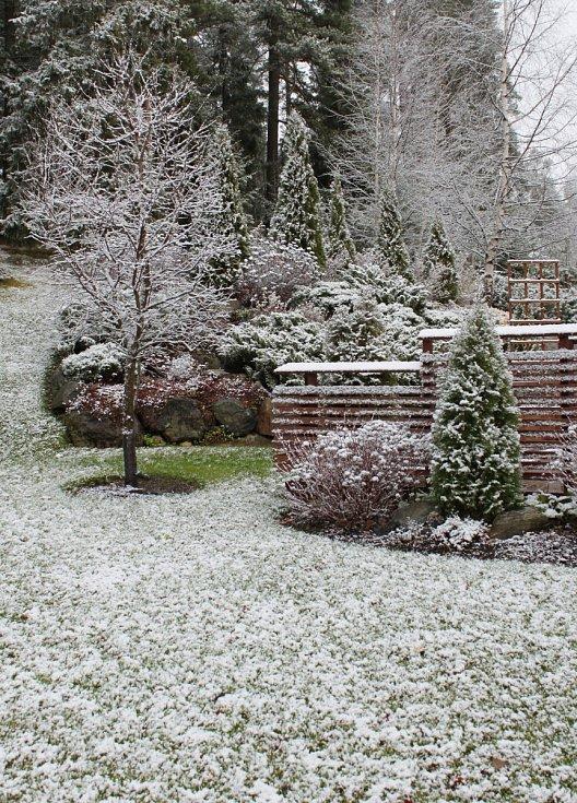 První sníh na zahradě