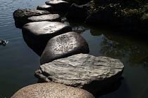 Od úterý 21. srpna 2012 mohou návštěvníci Buddha-Baru spatřit snímky Václava Wiesnera. Výstava nese název Genius loci japonských zahrad.