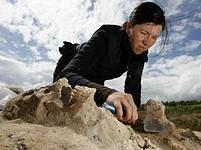 Antropoložka Bettina Jungkhausová při práci s ostatky.
