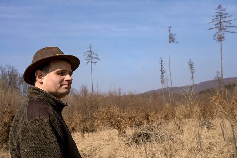 Lesník Lumír Dobrovolný. U Habrůvky na Blanensku studují odborníci i mladou smíšenou výsadbu dřevin.