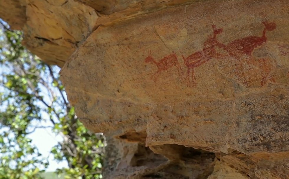 Kultura Clovis byla nejrozšířenější paleolitickou kulturou v Severní Americe. Šlo o sběrače a lovce mamutů