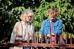S Viktorem Dvořákem ve filmu Havel