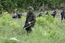 Kolumbijská vláda se dohodla s největší povstaleckou skupinou na spolupráci při odstraňování min.