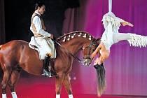 V představení Čtyři roční období si člověk a kůň připomenou svazek, který je poutá odnepaměti.
