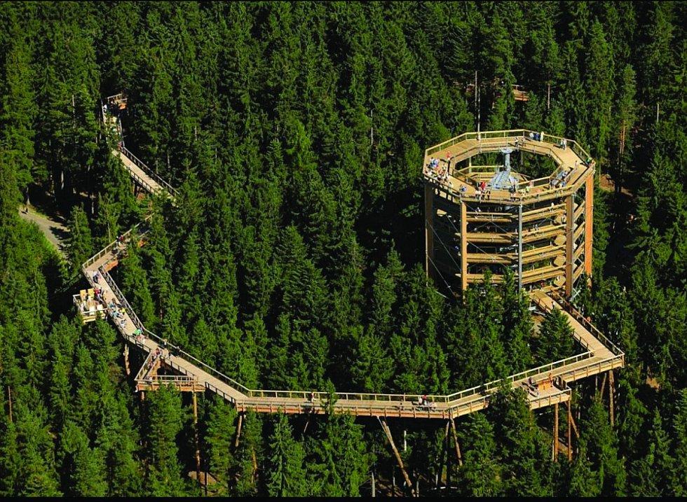 Stezka korunami stromů. První stezka svého druhu v České republice je v provozu od roku 2012.