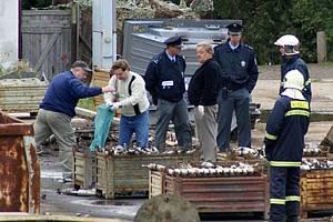 V místní provozovně kovového odpadu společnosti Excalibur Army došlo ráno ke smrtelnému pracovnímu úrazu 34letého dělníka ze Slovenska. Jeho tělo bylo doslova rozmetáno.