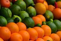Citrusy. Ilustrační foto