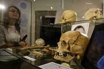 Zahájení výstavy Kriminalistického ústavu Praha k 55. výročí jeho založení proběhlo 18. listopadu v pražském Muzeu Policie. V rámci expozice je mimo jiné vystaveno několik děl falzifikátora obrazů Libora Prášila.