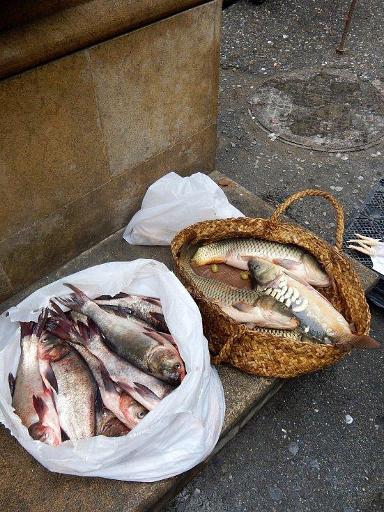 Ryby z Kaspického moře tu koupíte na trhu, ale i na rohu ulice. Vábně nevypadaly.