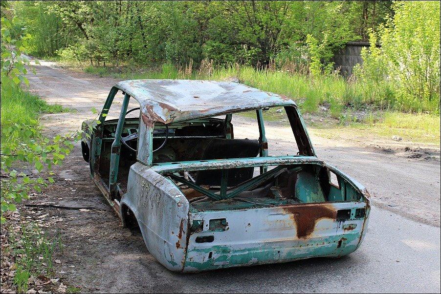 Od černobylské havárie uplynulo mnoho let. V uzavřené zóně se dnes daří fauně, budovy postupně pohltila příroda
