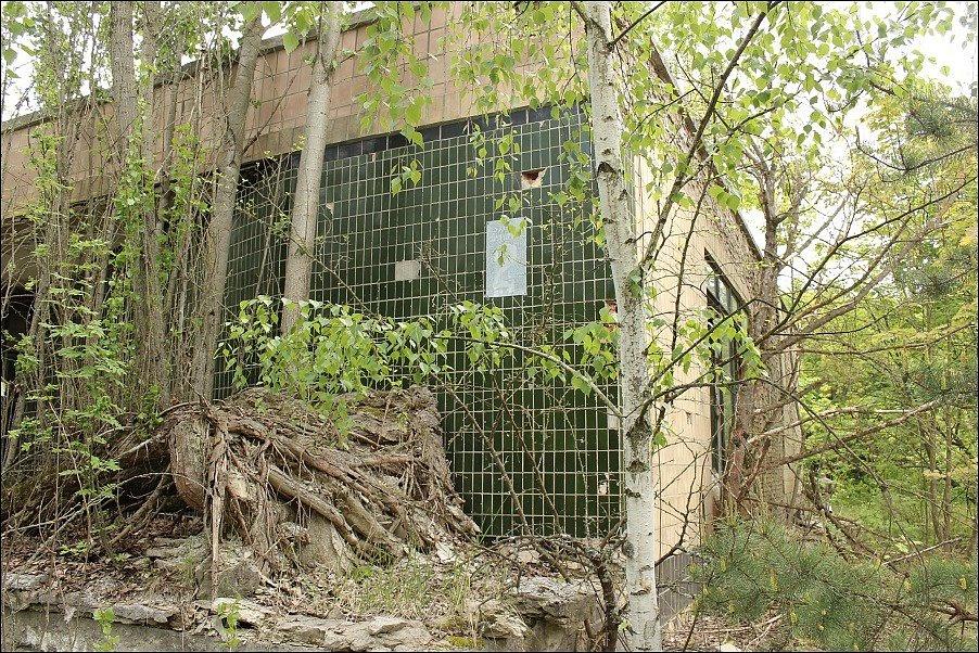 Budovy postupně pohltila příroda