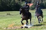 Policie založila roku 1991jízdní oddíl vPraze, odva roky později také ve Zlíně a vBrně. Služební koně používají istrážníci městské policie vOstravě, Pardubicích a vPraze.
